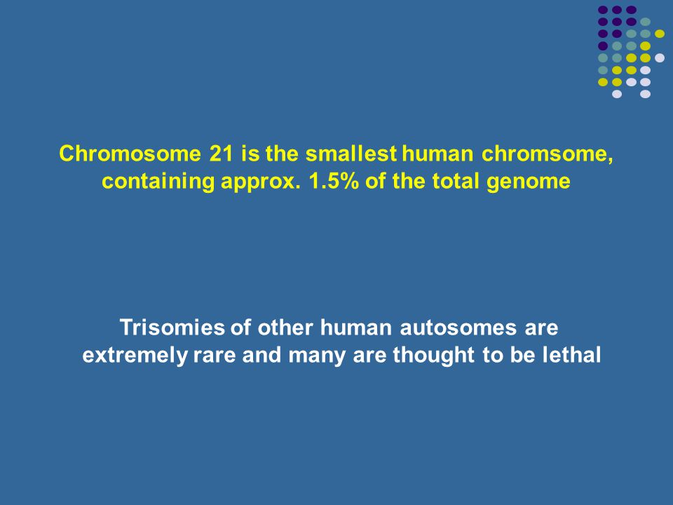 Chromosome 21 is the smallest human chromsome,