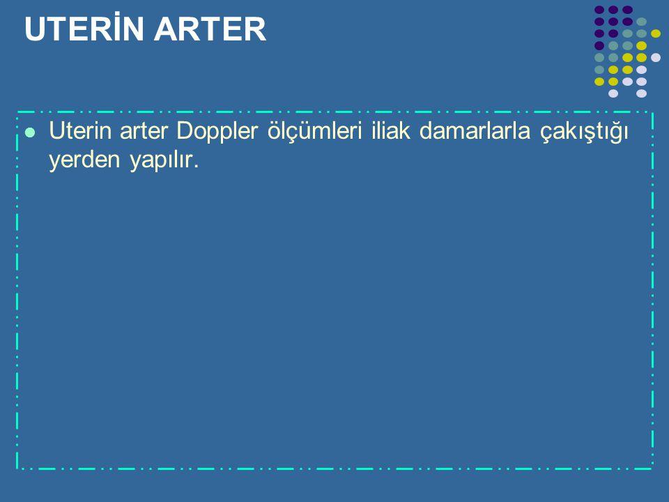 UTERİN ARTER Uterin arter Doppler ölçümleri iliak damarlarla çakıştığı yerden yapılır.