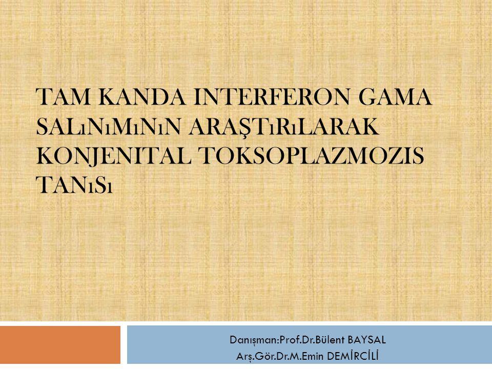 Danışman:Prof.Dr.Bülent BAYSAL Arş.Gör.Dr.M.Emin DEMİRCİLİ