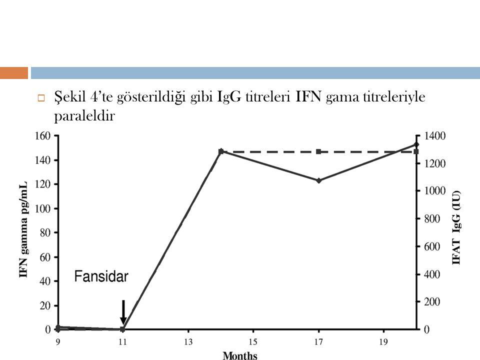 Şekil 4'te gösterildiği gibi IgG titreleri IFN gama titreleriyle paraleldir