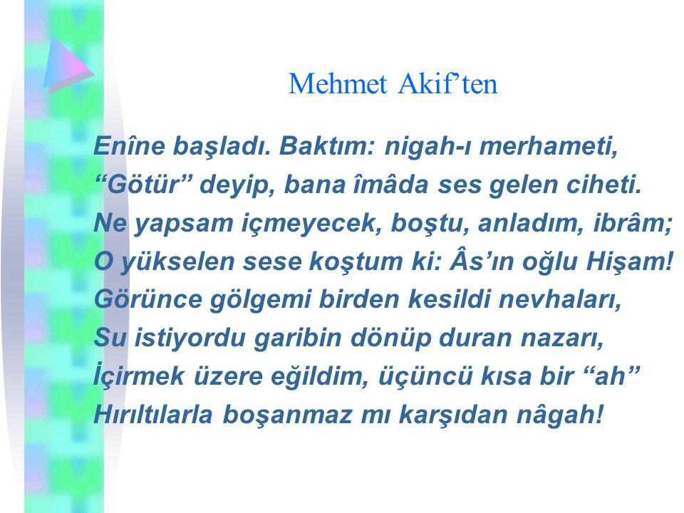 Mehmet Akif'ten Enîne başladı. Baktım: nigah-ı merhameti,