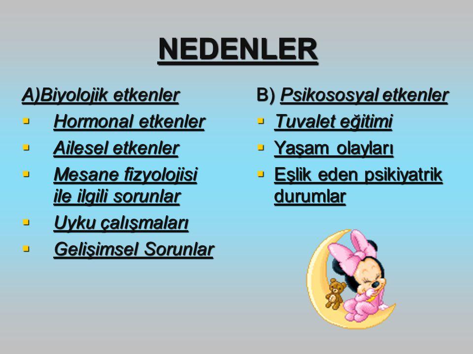 NEDENLER A)Biyolojik etkenler Hormonal etkenler Ailesel etkenler