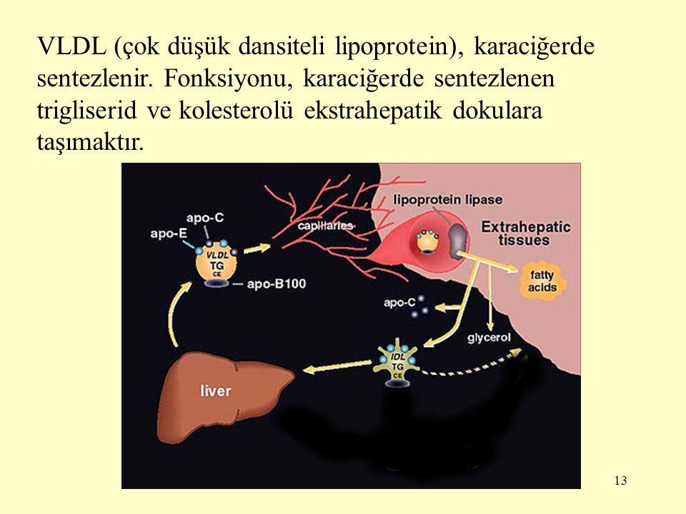 VLDL (çok düşük dansiteli lipoprotein), karaciğerde sentezlenir