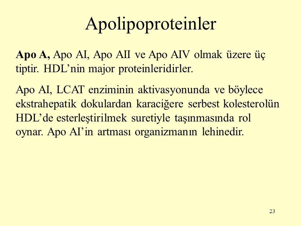 Apolipoproteinler Apo A, Apo AI, Apo AII ve Apo AIV olmak üzere üç tiptir. HDL'nin major proteinleridirler.
