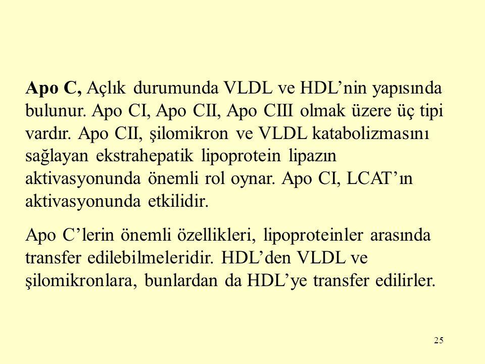 Apo C, Açlık durumunda VLDL ve HDL'nin yapısında bulunur