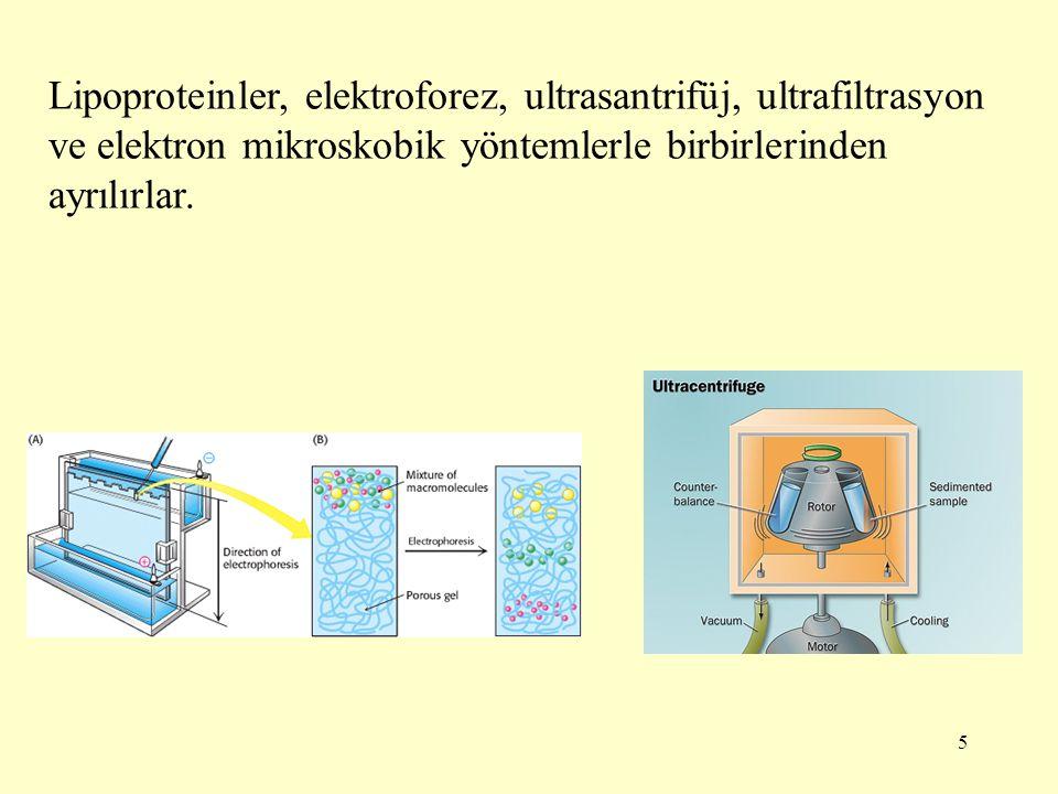 Lipoproteinler, elektroforez, ultrasantrifüj, ultrafiltrasyon ve elektron mikroskobik yöntemlerle birbirlerinden ayrılırlar.