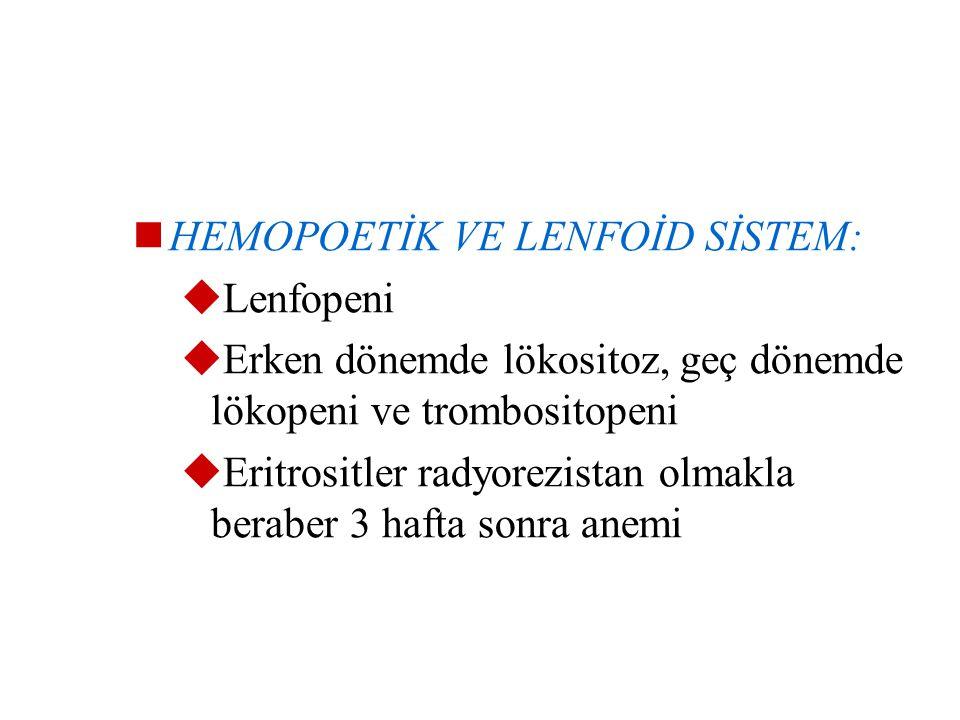 HEMOPOETİK VE LENFOİD SİSTEM: