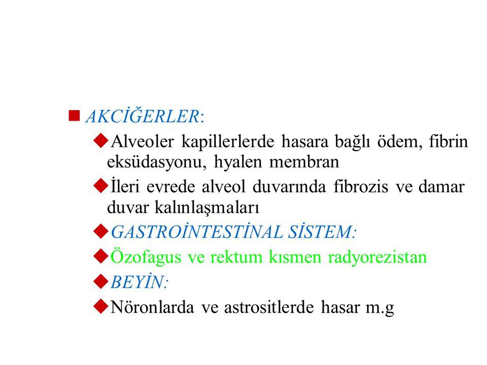 AKCİĞERLER: Alveoler kapillerlerde hasara bağlı ödem, fibrin eksüdasyonu, hyalen membran.