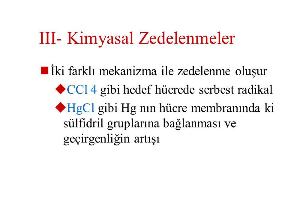 III- Kimyasal Zedelenmeler