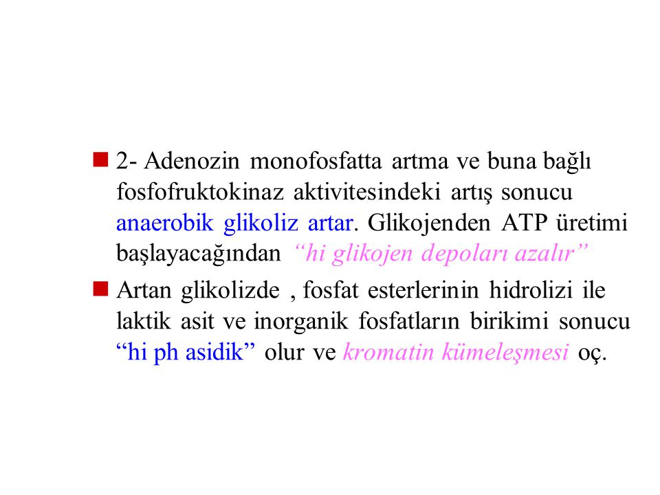 2- Adenozin monofosfatta artma ve buna bağlı fosfofruktokinaz aktivitesindeki artış sonucu anaerobik glikoliz artar. Glikojenden ATP üretimi başlayacağından hi glikojen depoları azalır