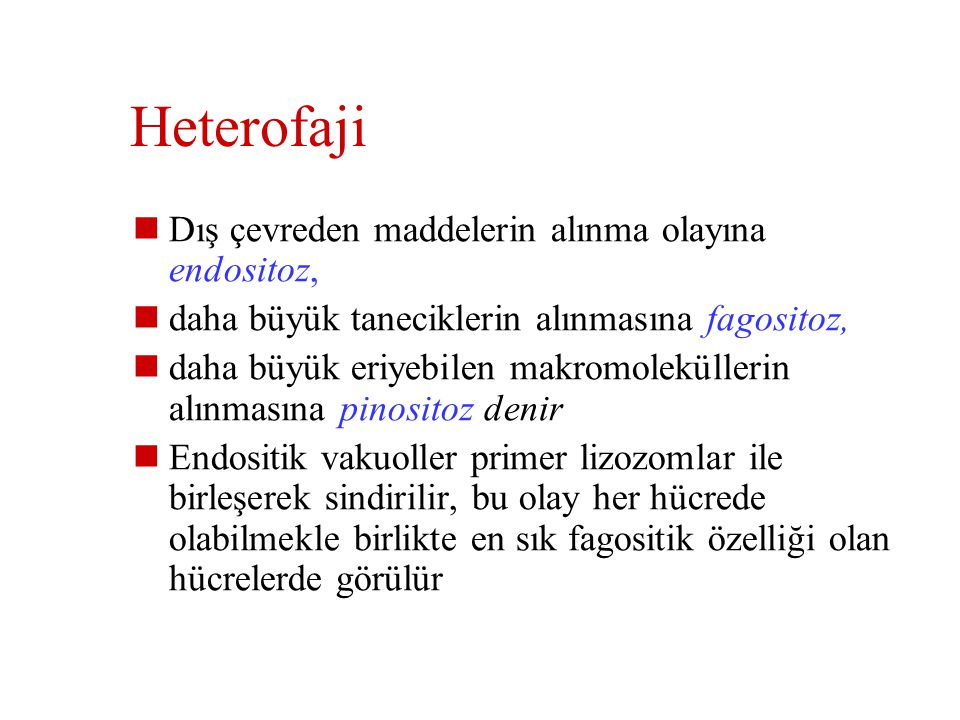 Heterofaji Dış çevreden maddelerin alınma olayına endositoz,