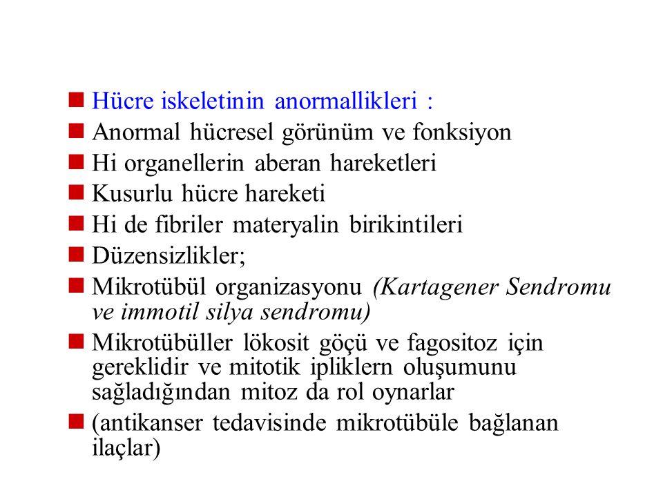 Hücre iskeletinin anormallikleri :