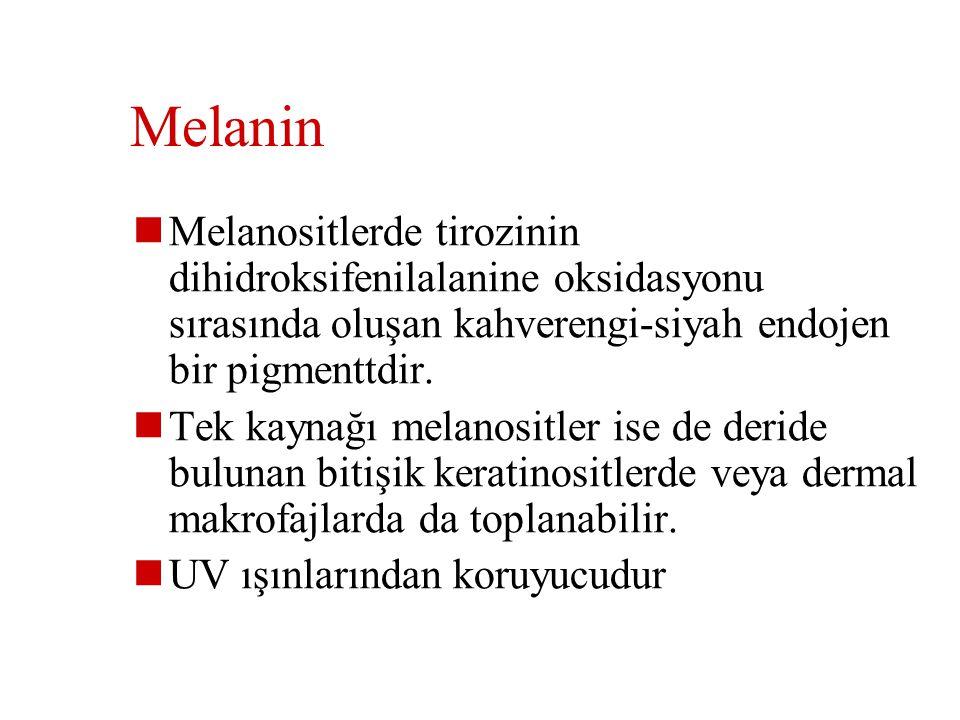 Melanin Melanositlerde tirozinin dihidroksifenilalanine oksidasyonu sırasında oluşan kahverengi-siyah endojen bir pigmenttdir.