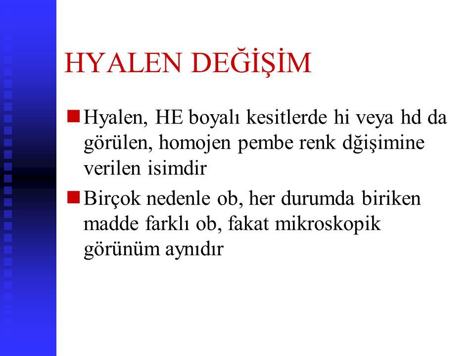 HYALEN DEĞİŞİM Hyalen, HE boyalı kesitlerde hi veya hd da görülen, homojen pembe renk dğişimine verilen isimdir.