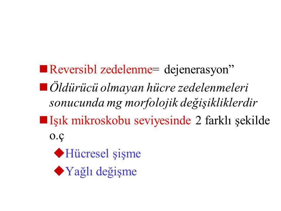 Reversibl zedelenme= dejenerasyon