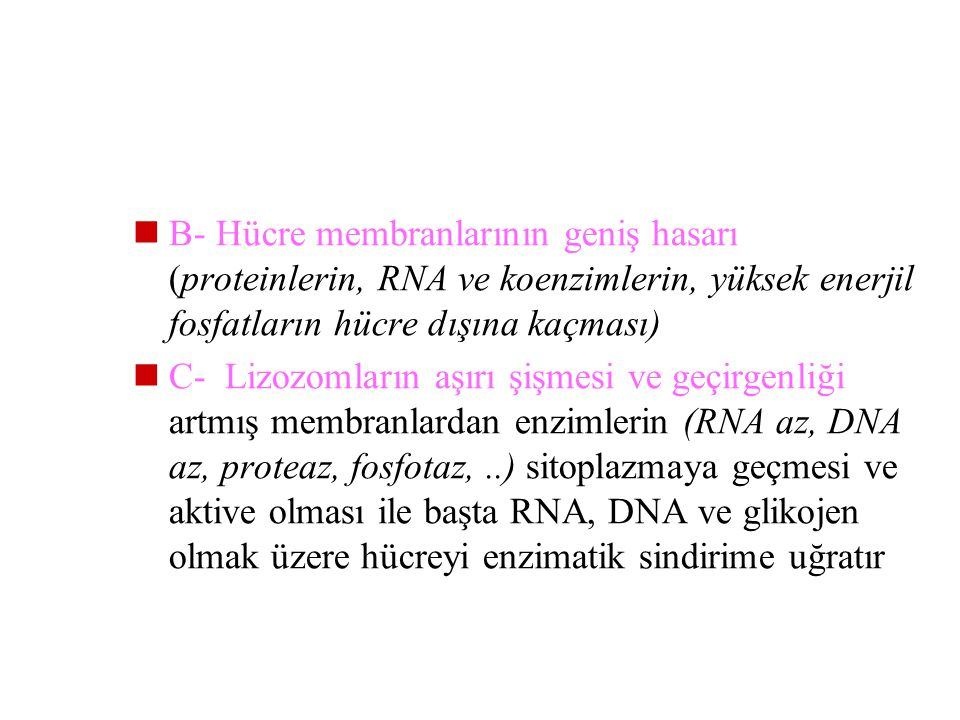 B- Hücre membranlarının geniş hasarı (proteinlerin, RNA ve koenzimlerin, yüksek enerjil fosfatların hücre dışına kaçması)
