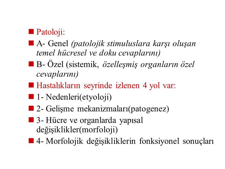 Patoloji: A- Genel (patolojik stimuluslara karşı oluşan temel hücresel ve doku cevaplarını)