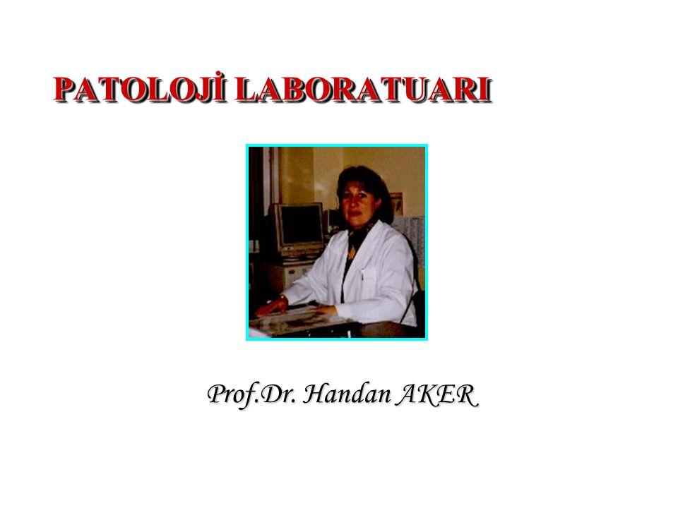 PATOLOJİ LABORATUARI Prof.Dr. Handan AKER