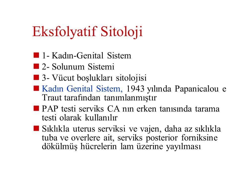 Eksfolyatif Sitoloji 1- Kadın-Genital Sistem 2- Solunum Sistemi