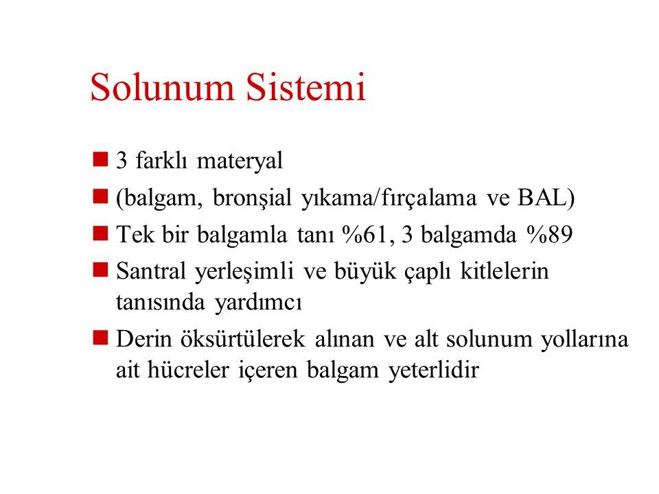 Solunum Sistemi 3 farklı materyal