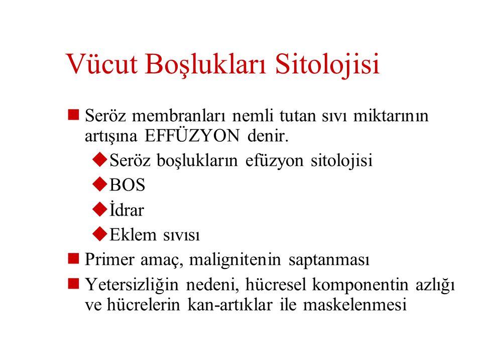Vücut Boşlukları Sitolojisi