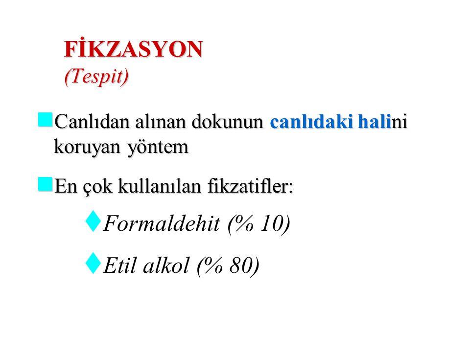 FİKZASYON (Tespit) Formaldehit (% 10) Etil alkol (% 80)
