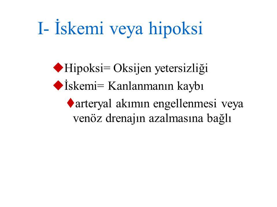 I- İskemi veya hipoksi Hipoksi= Oksijen yetersizliği