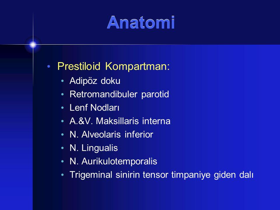 Anatomi Prestiloid Kompartman: Adipöz doku Retromandibuler parotid