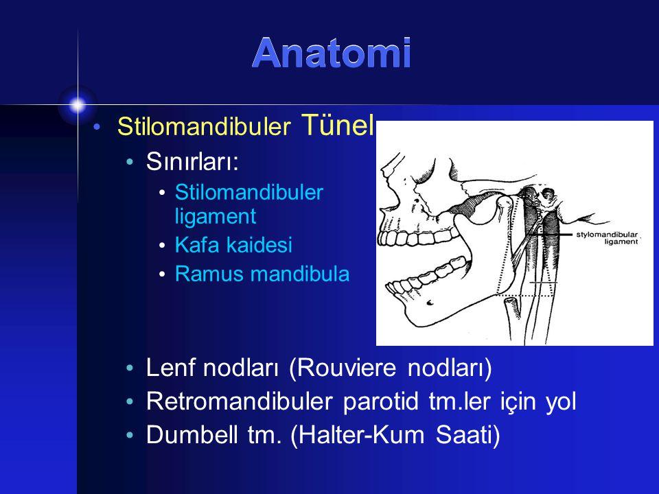 Anatomi Stilomandibuler Tünel Sınırları: