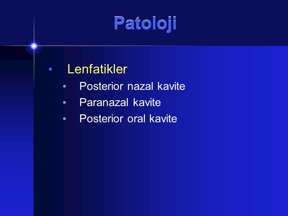 Patoloji Lenfatikler Posterior nazal kavite Paranazal kavite