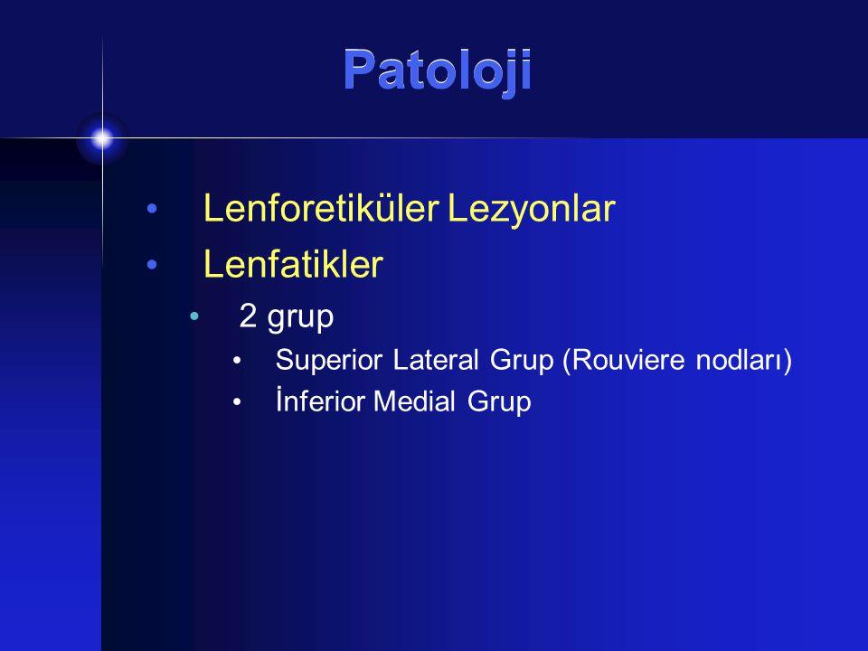 Patoloji Lenforetiküler Lezyonlar Lenfatikler 2 grup