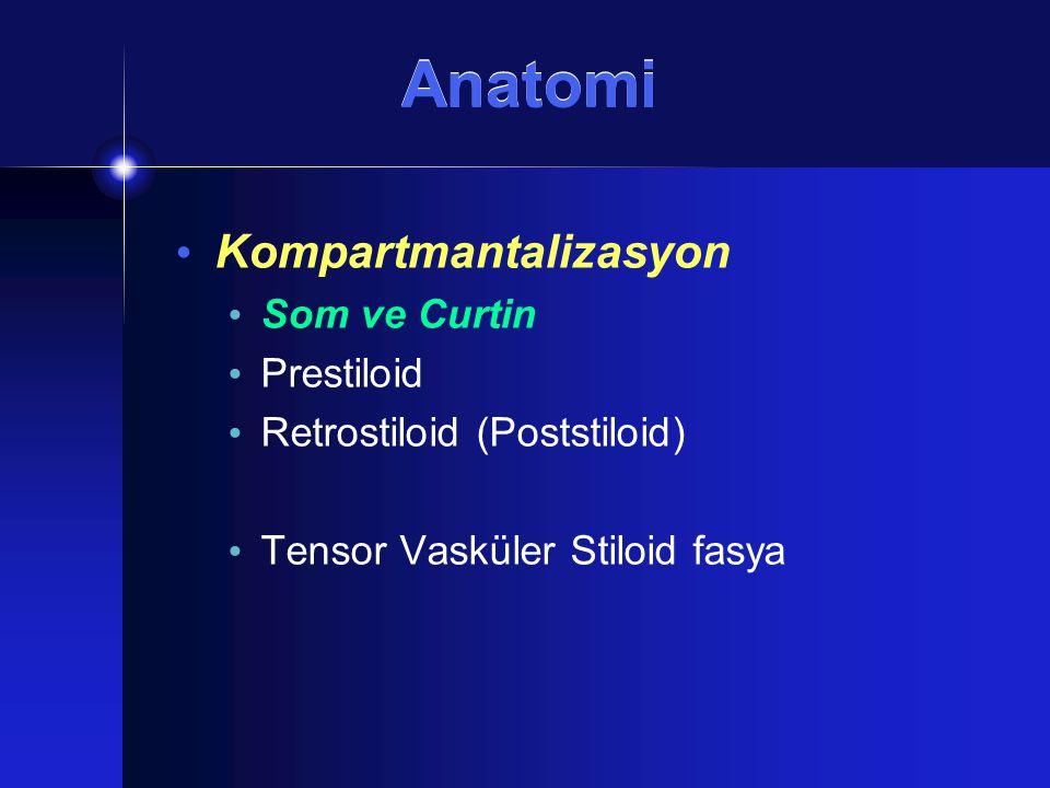 Anatomi Kompartmantalizasyon Som ve Curtin Prestiloid