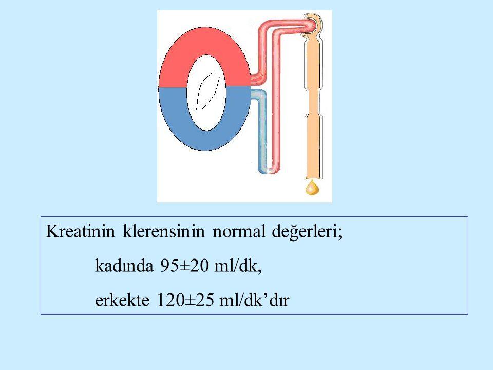 Kreatinin klerensinin normal değerleri;