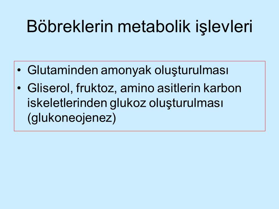 Böbreklerin metabolik işlevleri