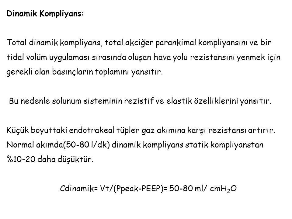 Dinamik Kompliyans: