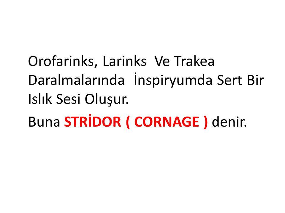Orofarinks, Larinks Ve Trakea Daralmalarında İnspiryumda Sert Bir Islık Sesi Oluşur.