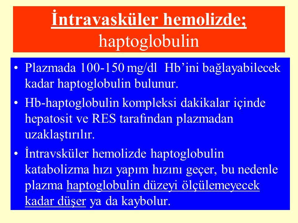 İntravasküler hemolizde; haptoglobulin