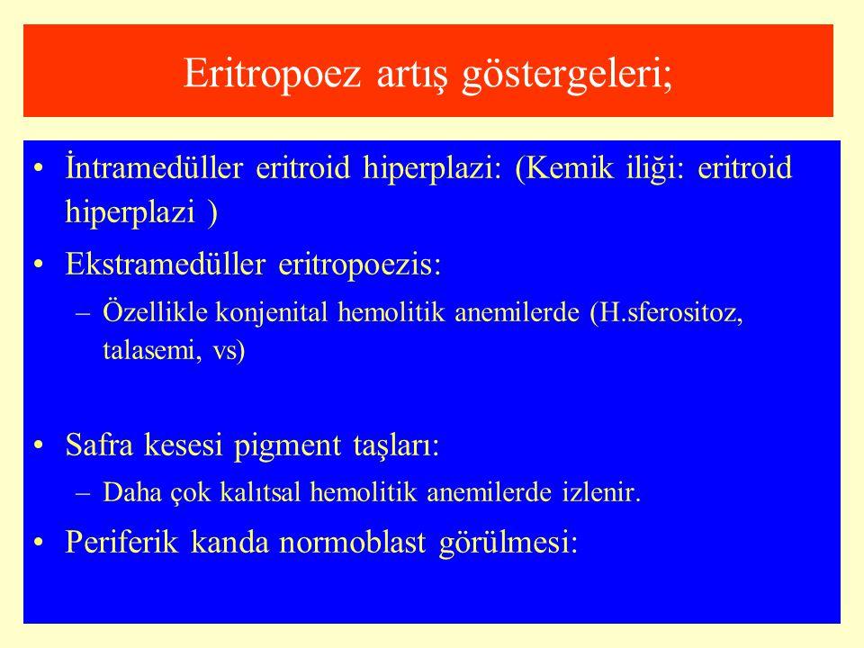 Eritropoez artış göstergeleri;