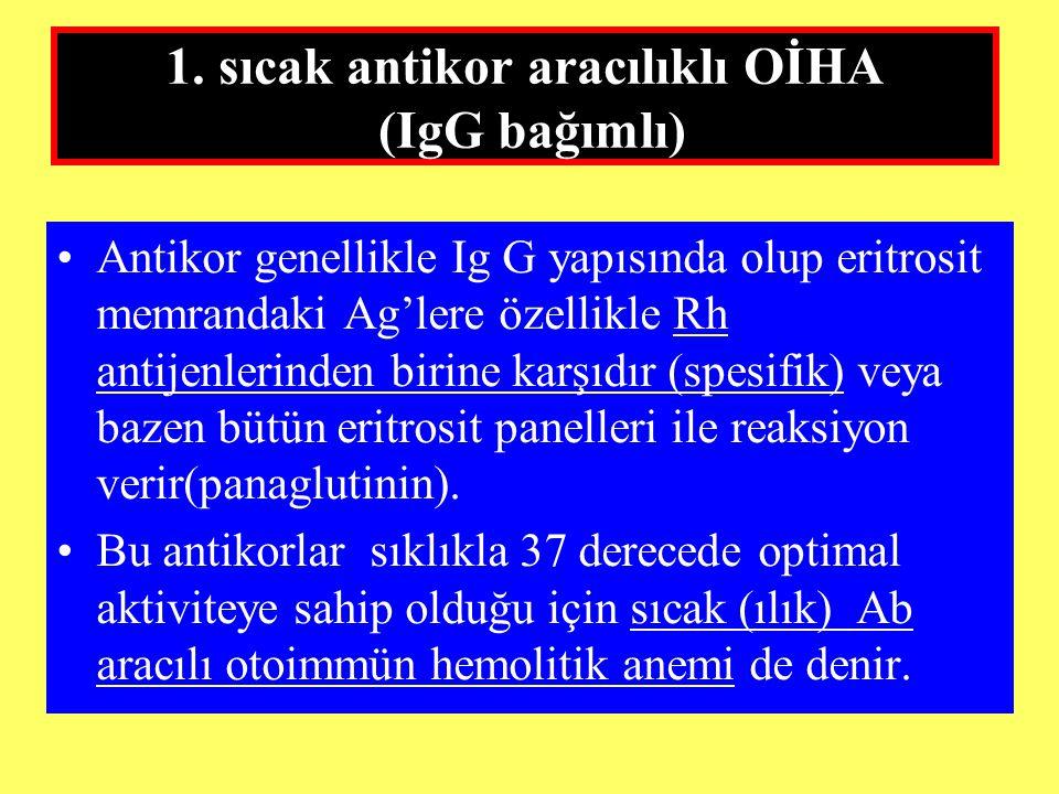 1. sıcak antikor aracılıklı OİHA (IgG bağımlı)