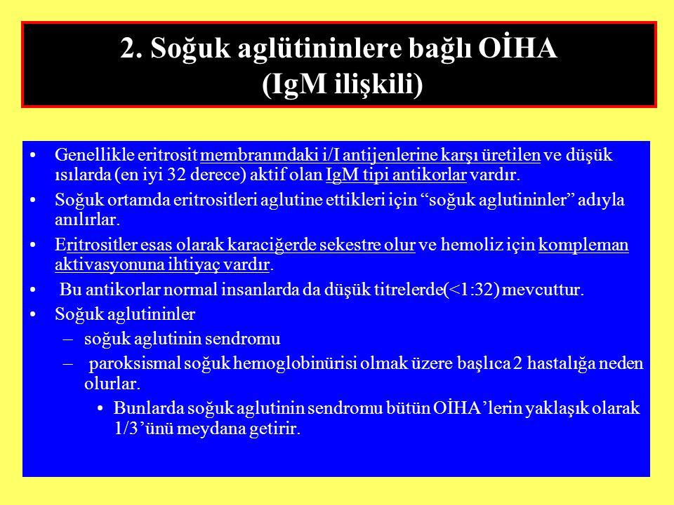 2. Soğuk aglütininlere bağlı OİHA (IgM ilişkili)