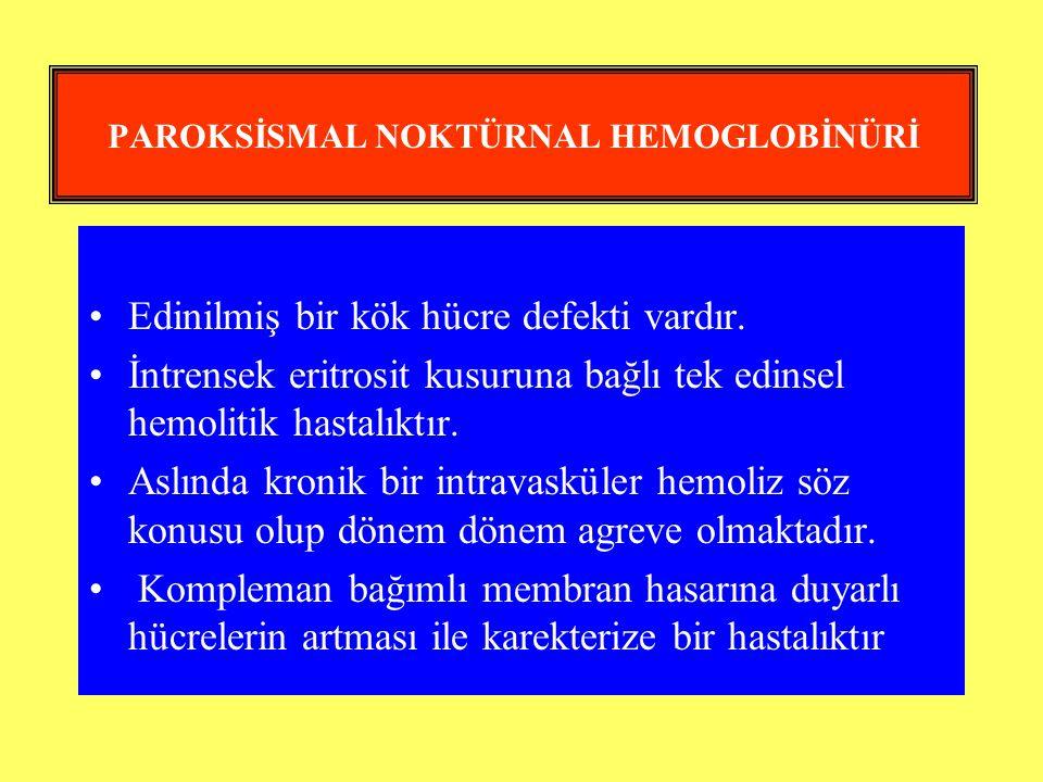 PAROKSİSMAL NOKTÜRNAL HEMOGLOBİNÜRİ