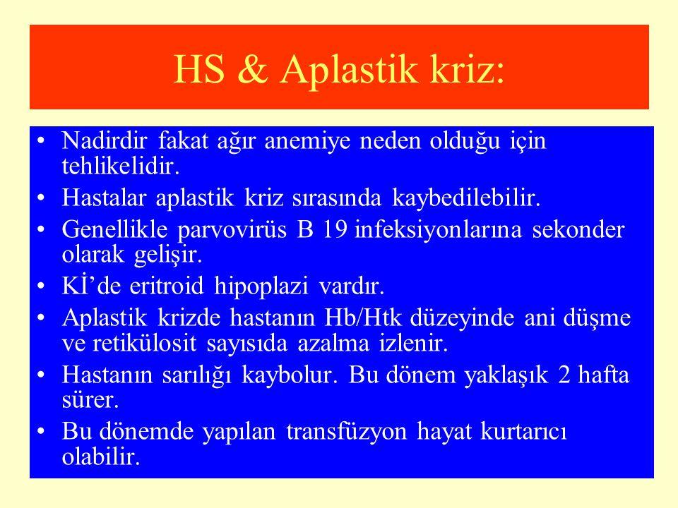 HS & Aplastik kriz: Nadirdir fakat ağır anemiye neden olduğu için tehlikelidir. Hastalar aplastik kriz sırasında kaybedilebilir.