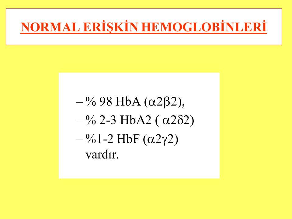 NORMAL ERİŞKİN HEMOGLOBİNLERİ
