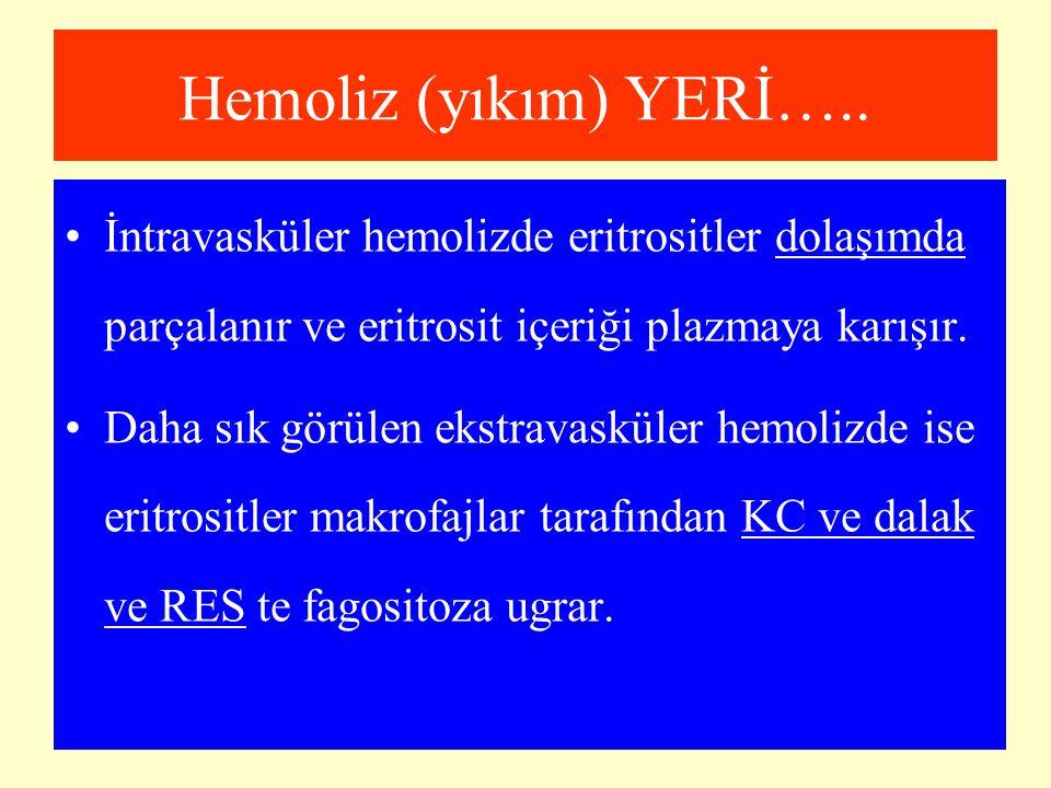 Hemoliz (yıkım) YERİ….. İntravasküler hemolizde eritrositler dolaşımda parçalanır ve eritrosit içeriği plazmaya karışır.