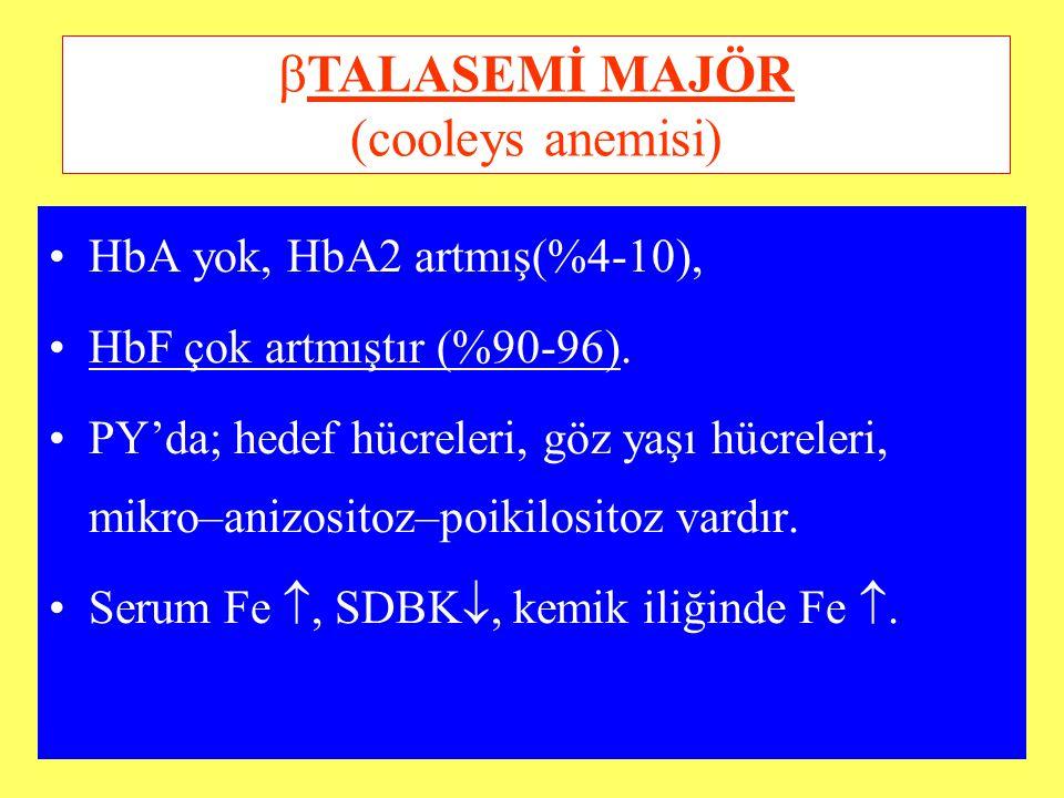 TALASEMİ MAJÖR (cooleys anemisi)