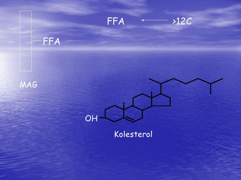 FFA >12C FFA MAG OH Kolesterol