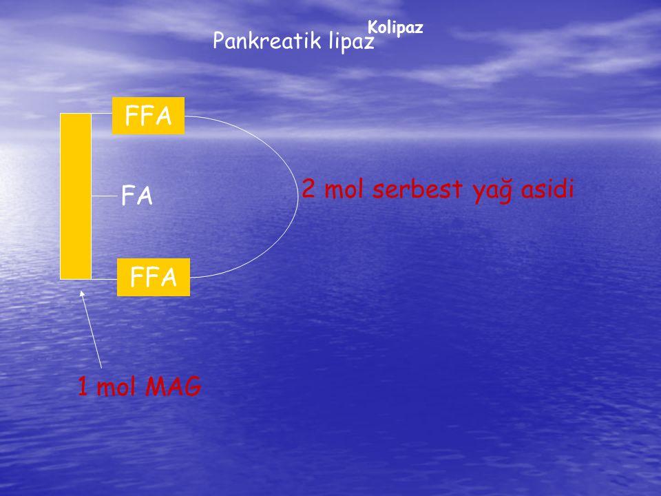 FFA FA 2 mol serbest yağ asidi FA FA FFA 1 mol MAG Pankreatik lipaz