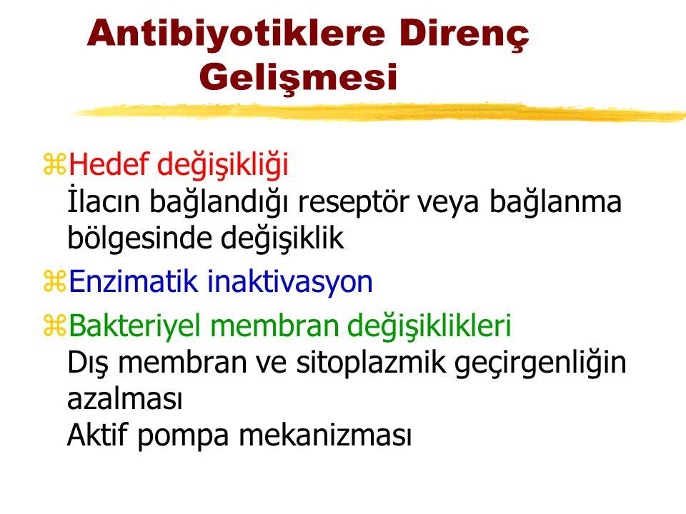 Antibiyotiklere Direnç Gelişmesi