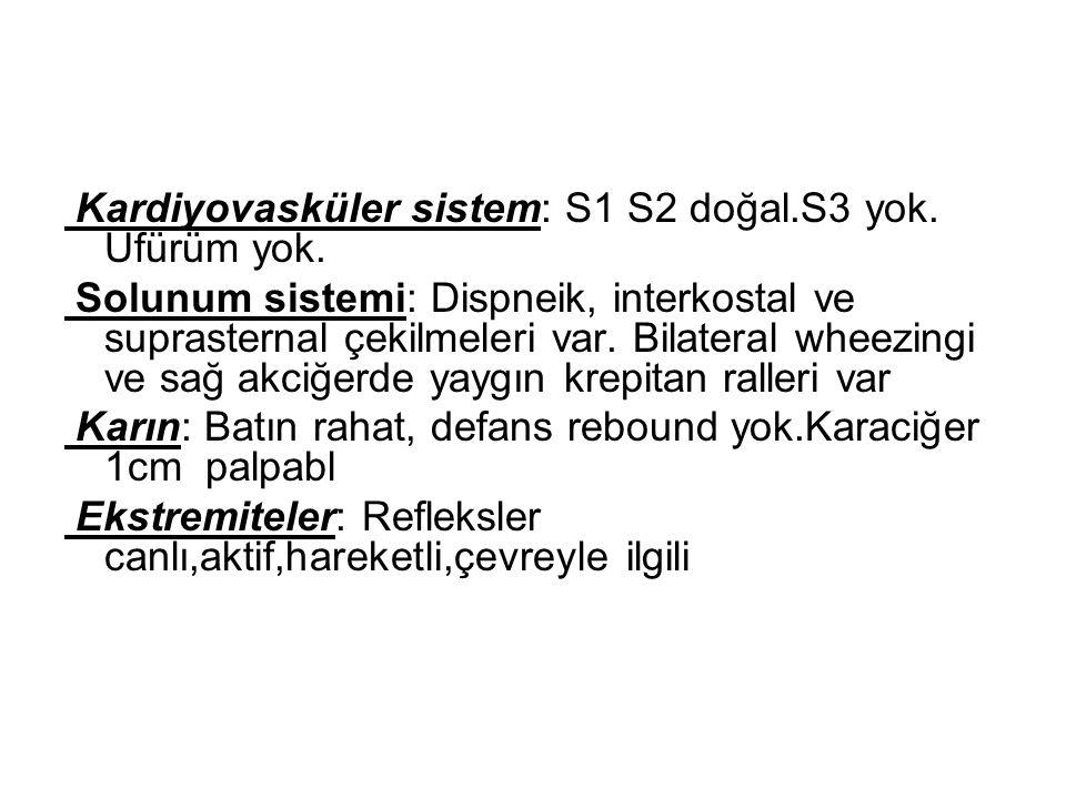 Kardiyovasküler sistem: S1 S2 doğal.S3 yok. Üfürüm yok.