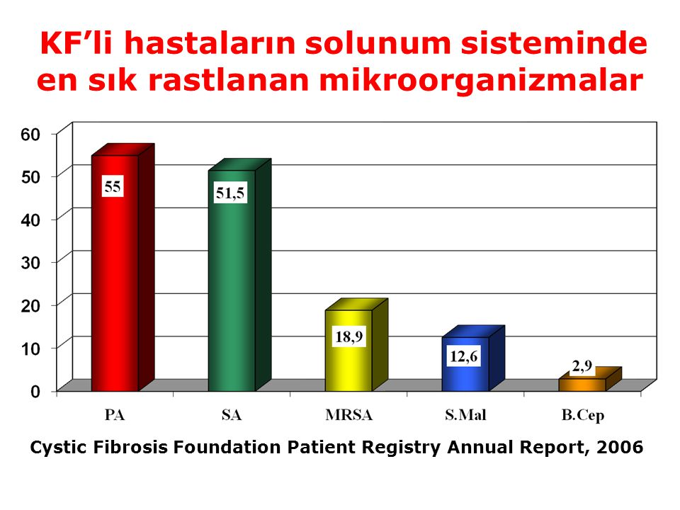 Cystic Fibrosis Foundation Patient Registry Annual Report, 2006